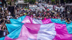 Representatividade: identidades de gênero dissidentes na literatura - Parte 2